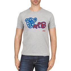 Vêtements Homme T-shirts manches courtes Wati B TSMIKUSA Gris