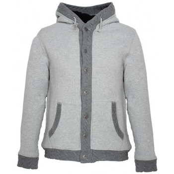 Vêtements Homme Sweats Japan Rags Sweat à capuche  Stanfur Gris Gris