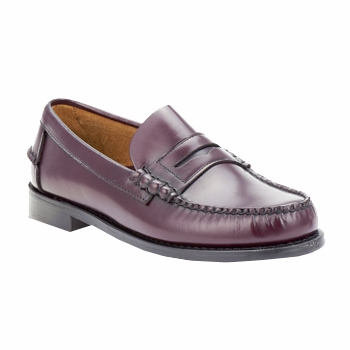 Chaussures Homme Mocassins Sebago CLASSIC CORD