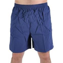 Vêtements Homme Maillots / Shorts de bain Speedo Short de bain  Kestral Bleu / Blanc Bleu
