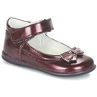 Chaussures Fille Ballerines / babies Citrouille et Compagnie FRIZZY Bordeaux