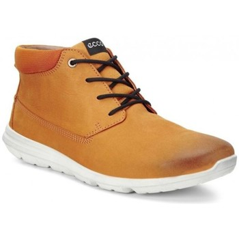 Chaussures Homme Baskets basses Ecco Sneaker Calgary Mid Marron