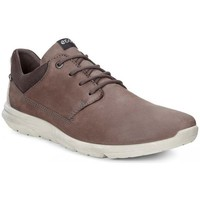 Chaussures Homme Baskets basses Ecco Sneaker Calgary Low Marron