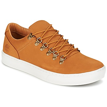 Chaussures Homme Baskets basses Timberland ADV 2.0 CUPSOLE ALPINE OX Marron