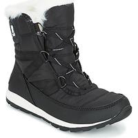 Chaussures Femme Bottes de neige Sorel WHITNEY SHORT LACE Noir