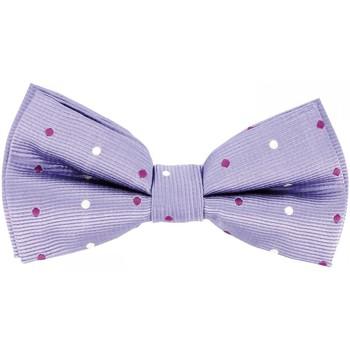 Vêtements Homme Cravates et accessoires Andrew Mac Allister noeud papillon bowtie parme Parme