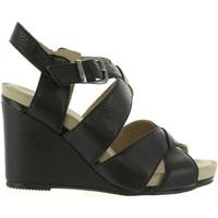 Chaussures Femme Sandales et Nu-pieds Hush puppies 560600-50 FINTAN Negro