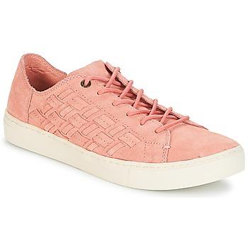 Chaussures Femme Baskets basses Toms LENOX Bloom