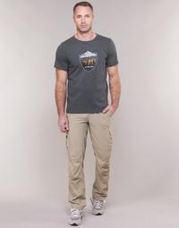 Vêtements Homme Pantalons cargo Columbia SILVER RIDGE II CARGO PANT Beige