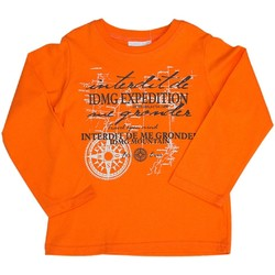 Vêtements Enfant Sweats Interdit De Me Gronder EXPEDITION Orange