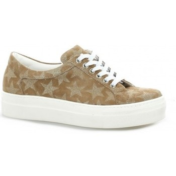 Chaussures Femme Baskets basses Exit Baskets cuir velours Taupe