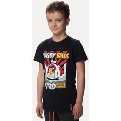 Vêtements Enfant T-shirts manches courtes Rugby Division Tee-shirt - Rugby Balls - Noir