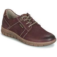 Chaussures Femme Derbies Josef Seibel STEFFI 59 Bordeaux