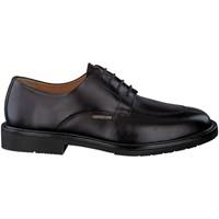 Chaussures Derbies Mephisto Derbies MIKE Marron